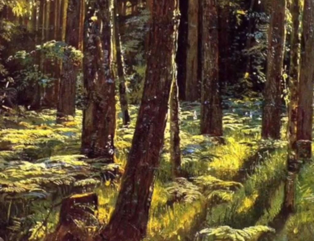Лесной хозяин М.Пришвин слушать аудиокнига