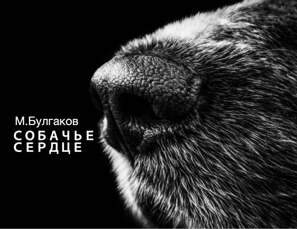 Собачье сердце Аудиокнига Слушать Булгаков