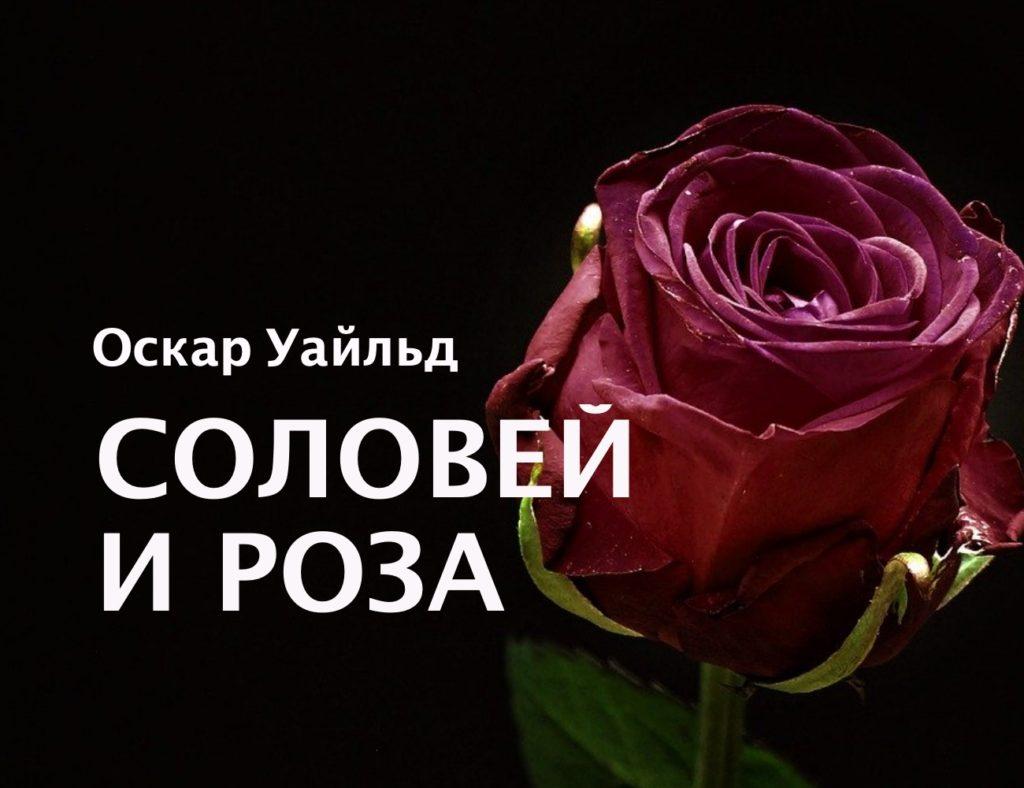 соловей и роза аудиокнига