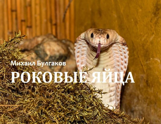 «Роковые яйца». М.А. Булгаков